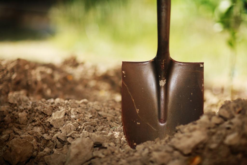 Shovel-in-soil_lt